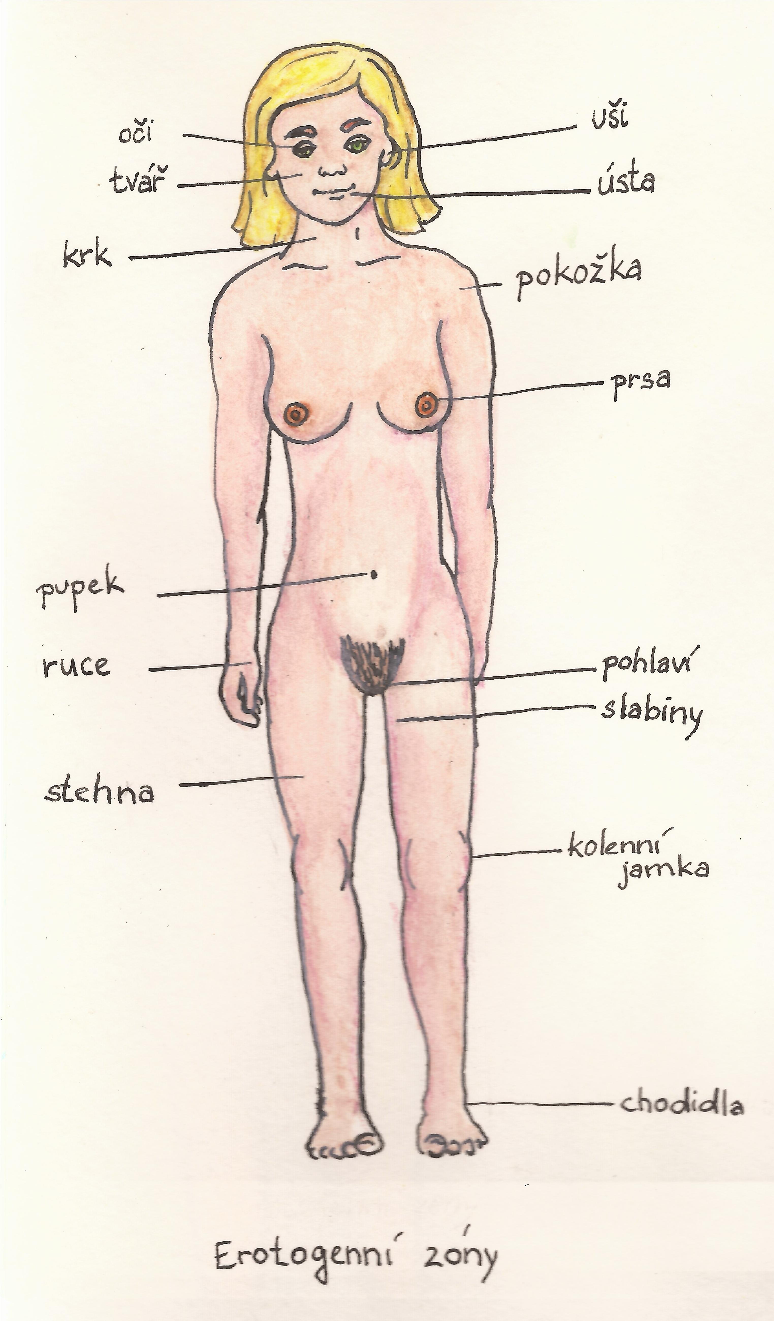 erotogenní zóny